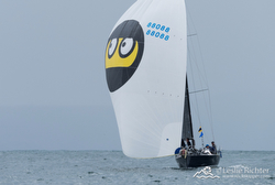 J/88 sailing Newport Ensenada Race