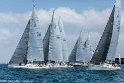 J/105s sailing Yachting Cup