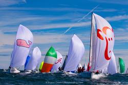 J70s sailing Worlds