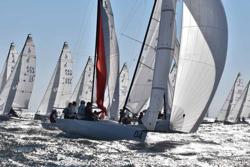 J/70 sailing under spinnaker