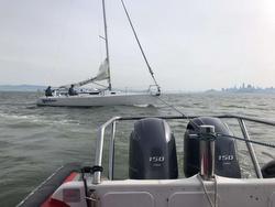 J/105 hits whale in Three Bridge Fiasco