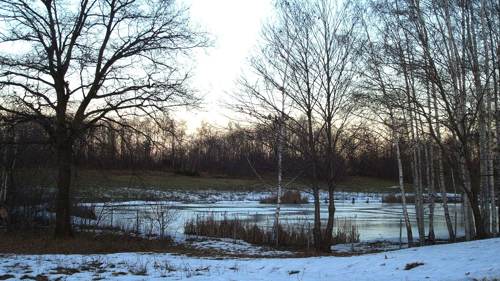 Photo of a pond surrounded by trees and snow.