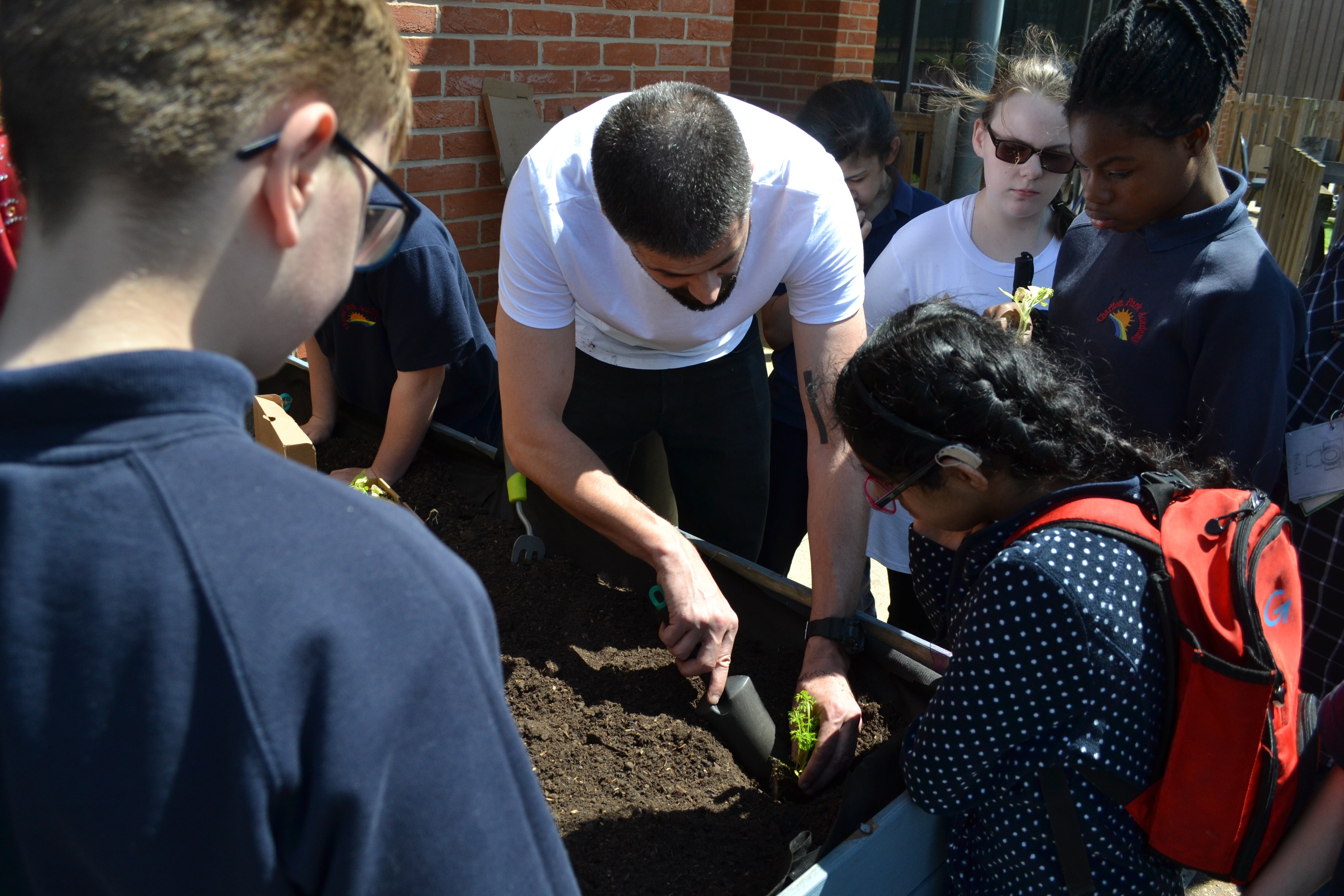 Students planting in a trug