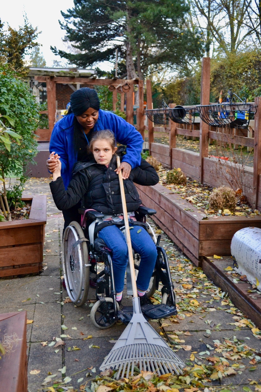 Young girl in wheelchair being helped to sweep leaves