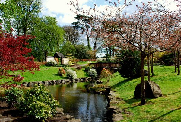 Japanese Garden, Lauriston Castle