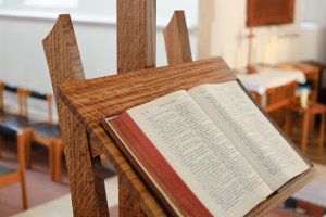 The Bible: Cultural Critique and Transformation