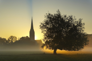 Day of Spiritual Reflection: The Garden of Delight