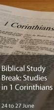 Biblical Study Break