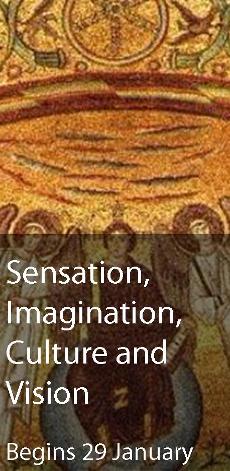 Sensation, Imagination, Culture and Vision