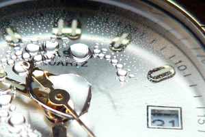 Liturgy and Time: Calendar and Daily Prayer