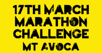 2013 Marathon Challenge