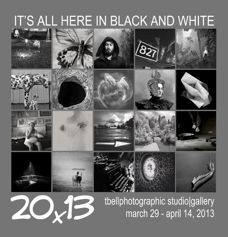 """it's all here in black and white: 20x13"" graphic"