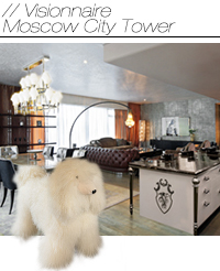 Visionnaire Moscow City Tower