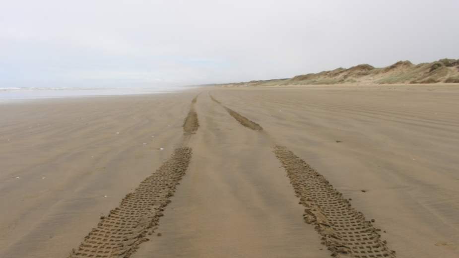 Ninety Mile Beach with tyre tracks