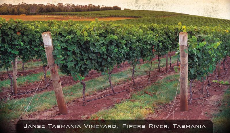 Jansz Sparkling Wines