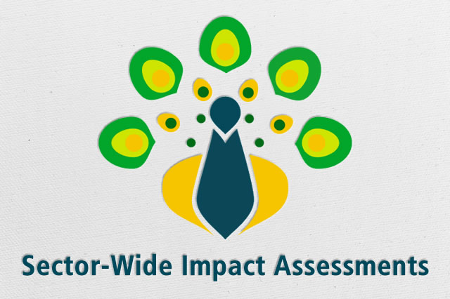 Sector-Wide Impact Assessments
