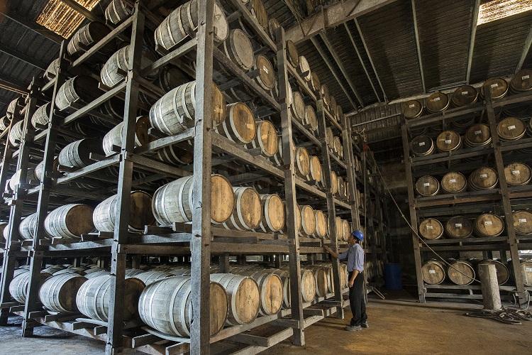 IBTC Distillery