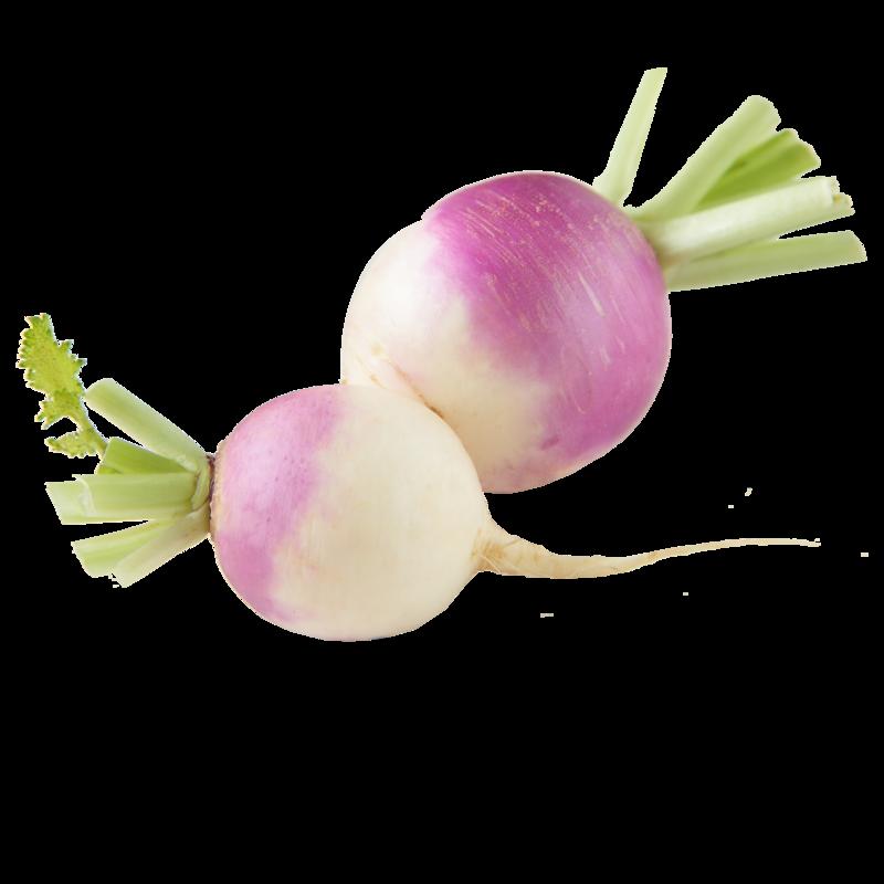 purple top turnips