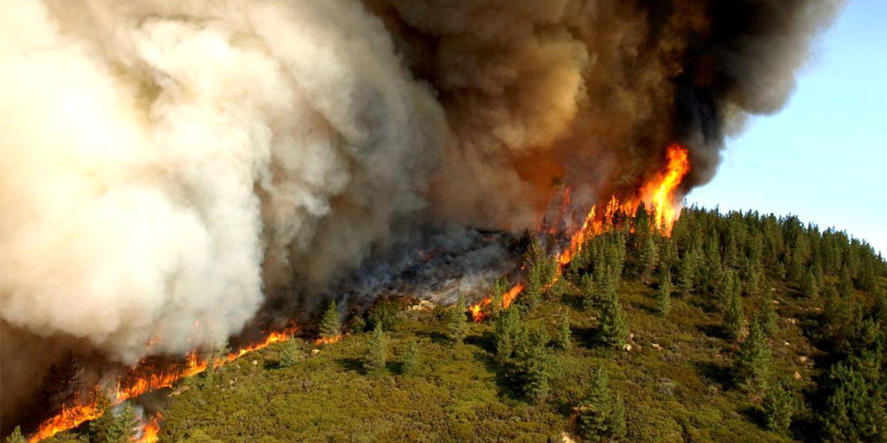 How Climate Change Ignites Wildfires From California to South Africa
