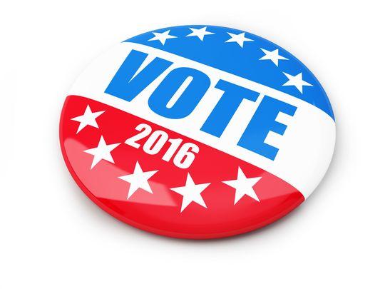 Vote 2016 button