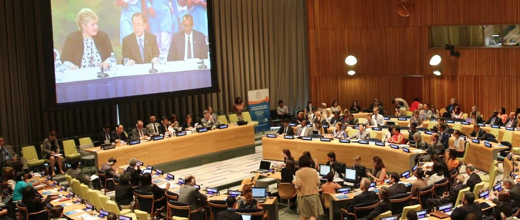 High-level Political Forum 2015 Session