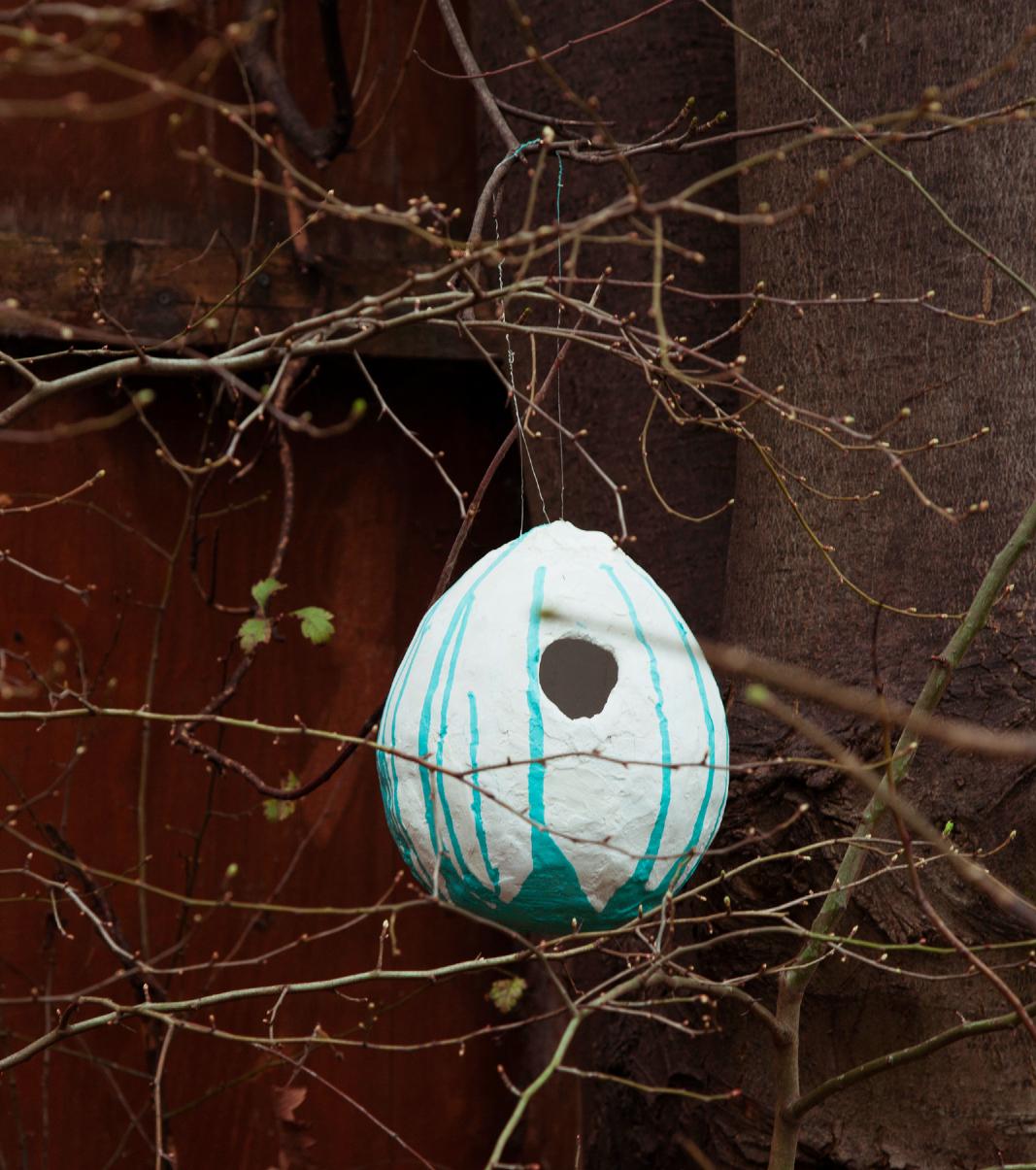 bird pods