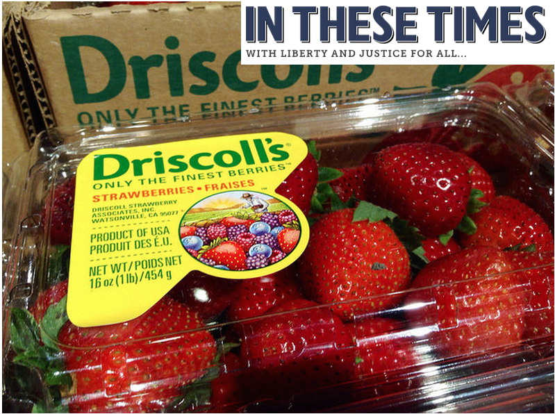Boycotted Driscoll's Berries
