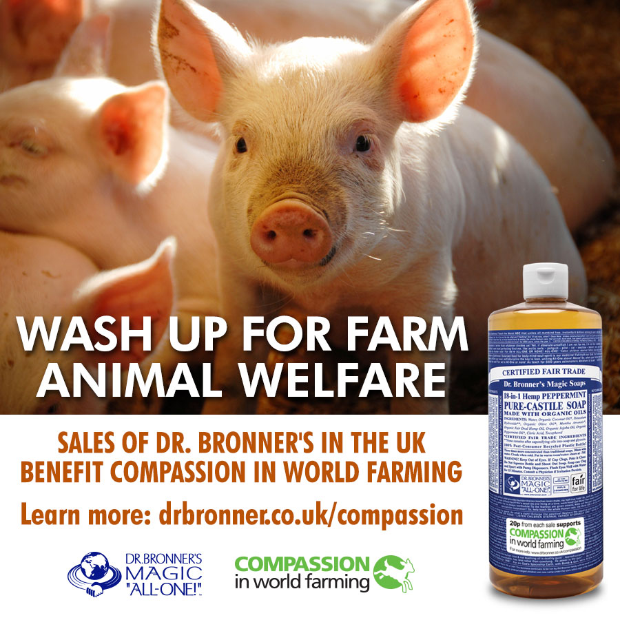Wash Up for Animal Welfare