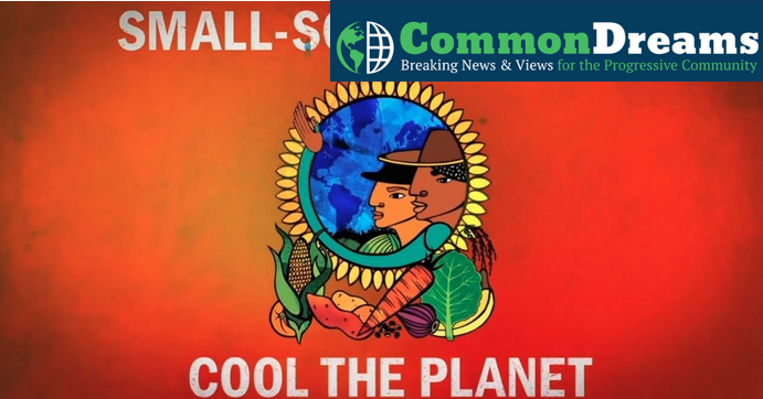 Small Scale Farmer Cool the Planet