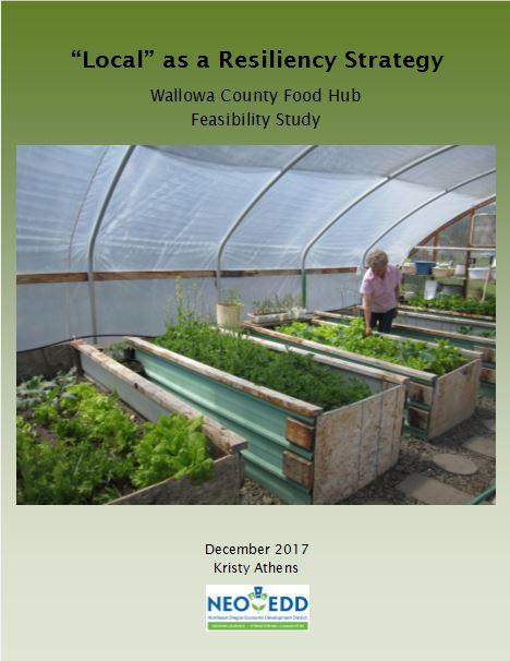 food hub feasibility