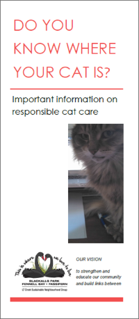 Cat brochure front cover