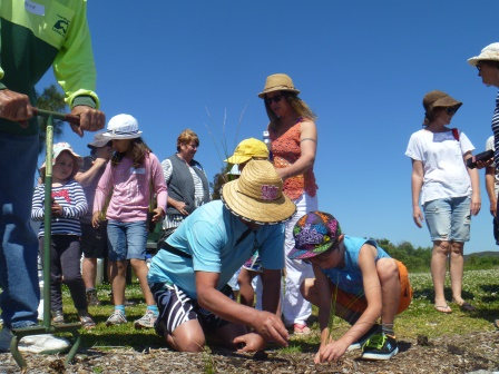 People doing Landcare plantings at Coon Island