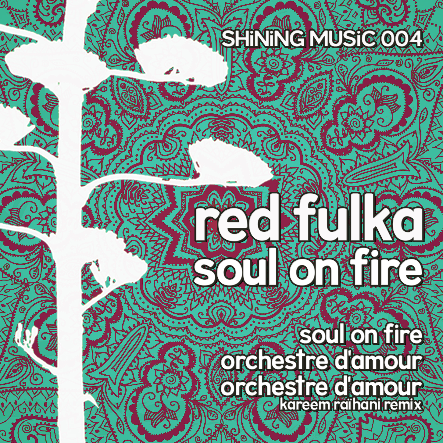 SHiNiNG MUSiC 04: Soul on Fire