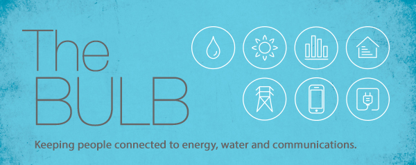 The Bulb – The Bi-monthly Utilities Literacy Bulletin