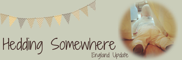 Hedding Somewhere: England Update