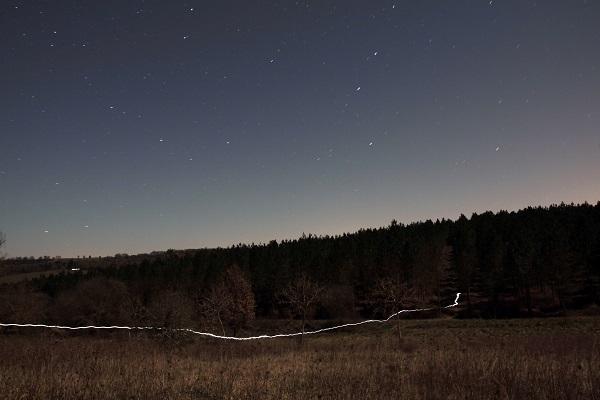 Des étoiles et des Hommes copyright Forest Trail 31