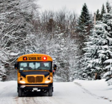 Bus driving in snowy woods