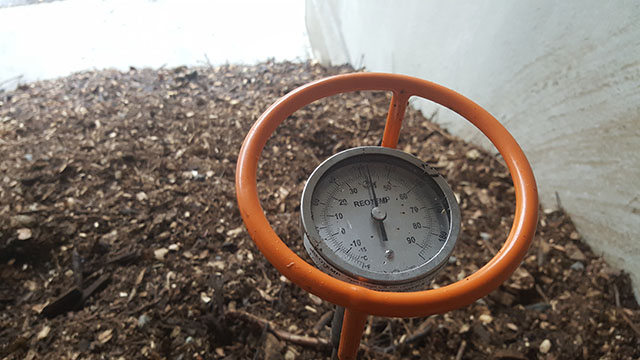 A special thermometer measures the internal temperature of a compost pile.