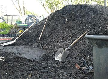 Shovels line a finished compost pile.