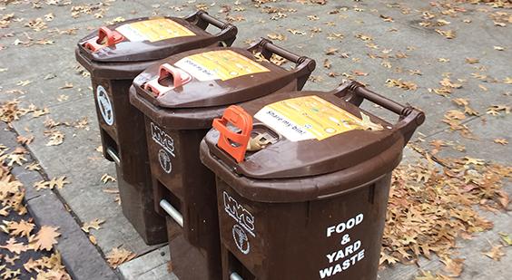 DSNY Brown bins lined up on sidewalk