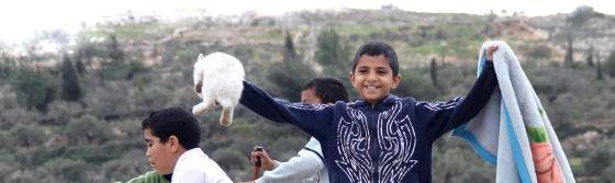 4 Home   Palestijnse jongen vindt huisdier terug onder puin [foto]