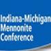INMI Conference report