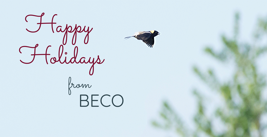 Happy Holidays from BECO