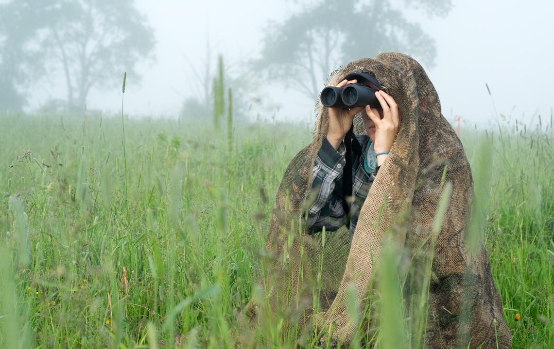 Jill Wettlaufer monitoring bobolink