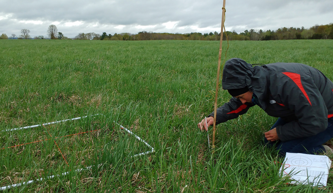 Collecting vegetation data in pastures