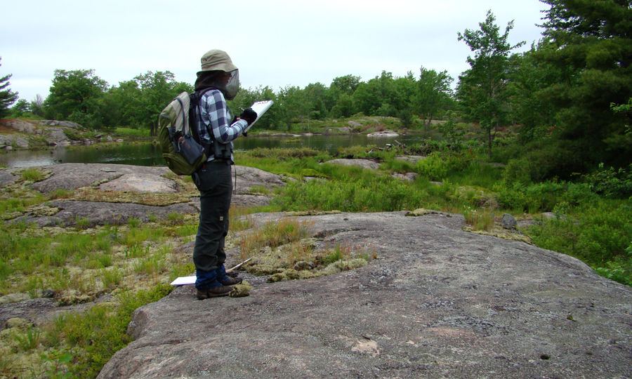 Surveying for Prairie Warblers