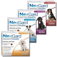 HUGE SALE!! 30% OFF Flea and Tick Prevention Products