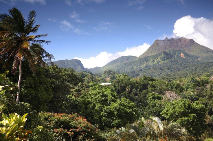 Panorama du Parc national de la Soufrière au niveau de l'Habitation Beausoleil