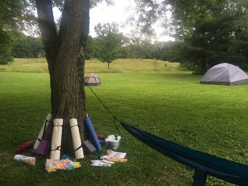 Tree-friendly hammock set up | July 2019 @ Bath Hollow Farm