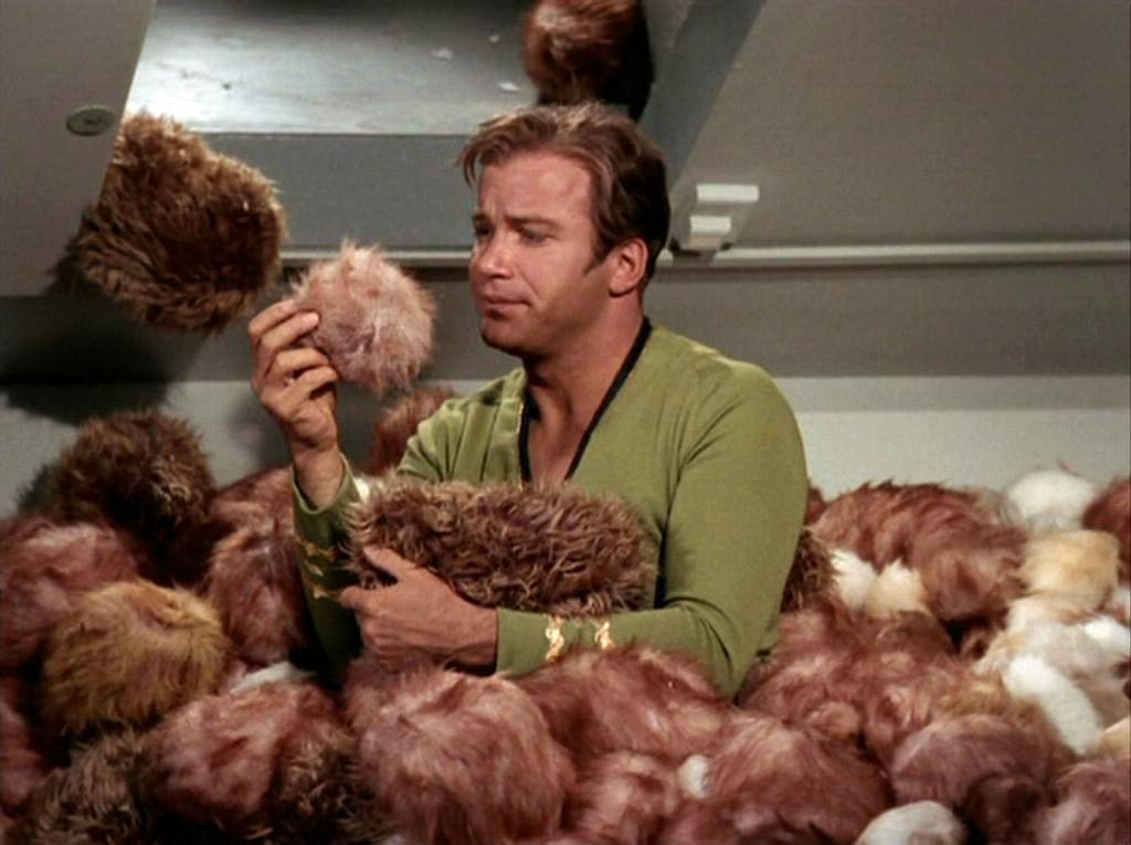 What's the trouble with tribbles?